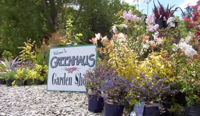 Welcome to Greenhaus Garden Shop and Nursery